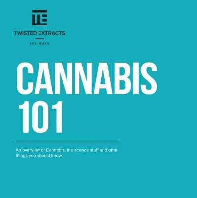 Cannabis 101 by Twisted Extracts and Northern Releaf